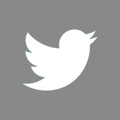Twitter_Gris.jpg